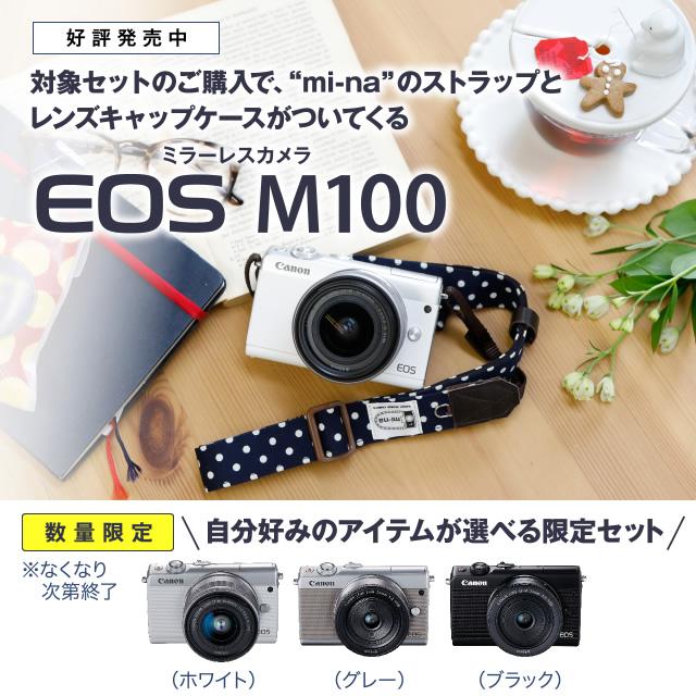 ミラーレスカメラ キヤノン EOS M100 ~おすすめコーディネート
