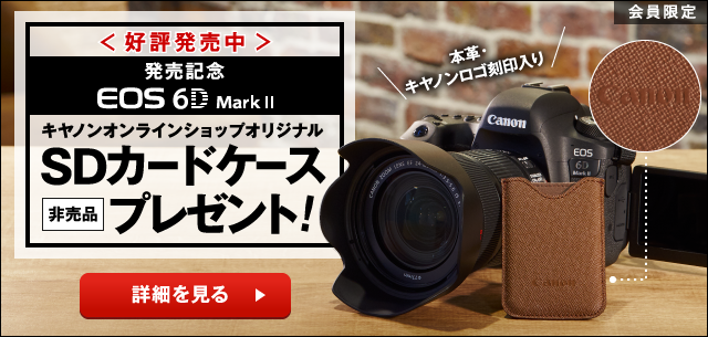 EOS 6D Mark II予約